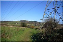 SX5656 : Power Lines over Langage footpath by Nigel Mole