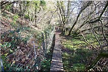 SX5856 : Duckboards carry footpath over marshy ground by Nigel Mole