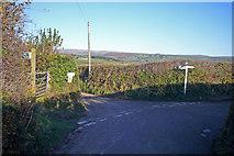 SX5856 : Venton Cross by Nigel Mole