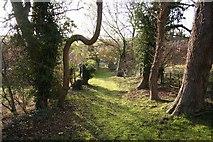 TF3579 : Church path by Richard Croft