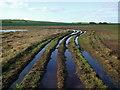 TA1660 : Low Grounds, Barmston by Paul Glazzard