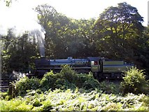 NZ8204 : Steam locomotive at Grosmont sheds by Brian Norman