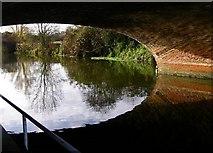 SK5907 : Under the Loughborough Road Bridge on the River Soar by Wesley Trevor Johnston
