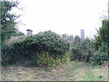 N8869 : Derelict Cottage Near Donaghmore Round Tower by JP