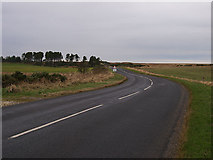 NZ7813 : B1266 road Ellerby Moor by Stephen McCulloch