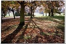 TQ3095 : Oakwood Park in Autumn, London, N14 by Christine Matthews
