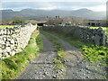 SH5829 : Lane to Brwyn-llynau farm by David Medcalf
