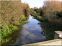 TF1309 : River Welland from the A15 bridge by Brian Green