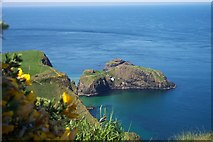 D0644 : Looking down on the Carrick-A-Rede Rope Bridge by Sandra White