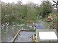 NZ1494 : Archie's Pond, Longhorsley by Sandra White