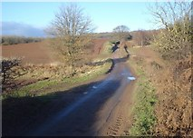 SO7334 : Clencher's Mill Lane by Trevor Rickard