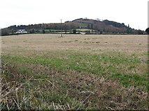 T0949 : Carrigroe Hill by Jonathan Billinger