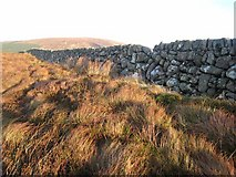 NX9460 : Wall on Boreland Hill by Oliver Dixon
