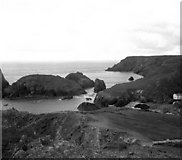 SW6813 : Kynance Cove, The Lizard, Cornwall by Dr Neil Clifton