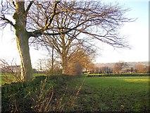 SE1321 : Field edge near Boothroyd, Rastrick by Humphrey Bolton