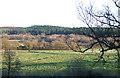 SO5098 : Farmland and Coppice, Lawley, Shropshire by Roger  Kidd