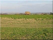 TR3451 : View across the fields near Great Mongeham by Nick Smith