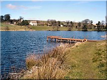 C4619 : Jetty at Enagh Lough by Kay Atherton