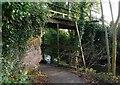 J3166 : Old footbridge, disused Lagan Navigation (2) by Albert Bridge