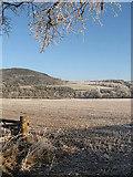 NT5534 : A frozen stubble field by Walter Baxter
