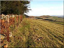 NT9912 : Hill farmland by Walter Baxter