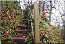 J3996 : Steps, Glenoe Glen by Albert Bridge
