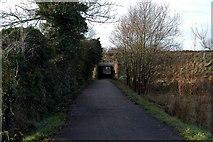 J2967 : Motorway Tunnel #1 by Wilson Adams