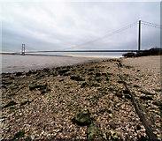 TA0225 : The Humber Bridge from Hessle foreshore by Steve  Fareham