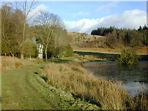SN7673 : Hawthorn Cottage and pond, Hafod Estate by Nigel Brown