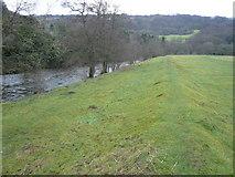 SK3057 : Raised Bank of the River Derwent at Cromford Meadows by Alan Heardman