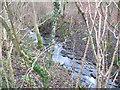 SJ3005 : Rowley Brook by Stephen Craven