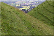 ST8412 : Iron-age earthworks, Hambledon Hill by Jim Champion