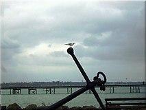 SU4208 : Hythe Pier by Val Pollard