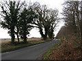 TG3130 : North Walsham Road by Evelyn Simak