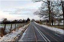J1461 : Drumbane Road, Moira by Wilson Adams