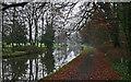 SD4853 : Lancaster Canal At Ellel Grange Bridge by J Scott