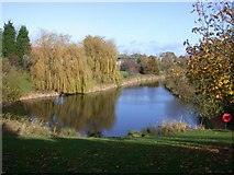 TL4661 : Lake on Cambridge Science Park by Keith Edkins