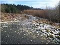SO3278 : Forest track junction on Black Hill by Trevor Rickard