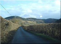 SO3276 : Lane near The Quern by Trevor Rickard