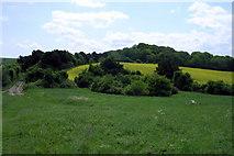 SU1420 : Field south-east of Mizmaze Wood by Jim Champion