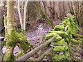 SO2619 : Cwm Bwch footpath by Graham Cole