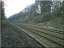 TQ2151 : Railway Cutting by Martyn Davies