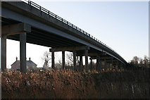 TM4599 : Winter reedbeds under Haddiscoe Bridge by Julie Williams
