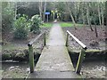 SZ0791 : Bournemouth Gardens: footbridge and steps by Chris Downer