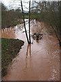 SO6937 : River Leadon after prolonged rain by Pauline E