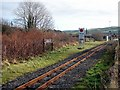 SN5980 : Llanbadarn Station, Vale of Rheidol Railway by John Lucas