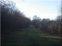 TL4662 : Bridleway from Landbeach to Kings Hedges by Keith Edkins