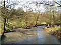 SO2798 : Down Stream by Paul Beaman
