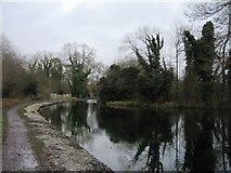 SU7251 : Turning pool - Basingstoke Canal. by Sandy B