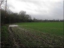 SU7251 : Farmland in winter by Sandy B